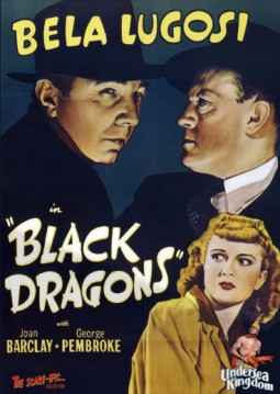 Black Dragons Affiche