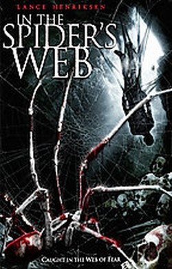 In the spider's web Affiche