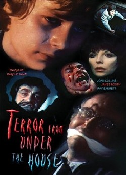 Terror from under the house Affiche