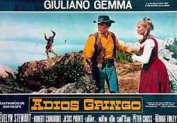 {Photo 4 de Adios Gringo}