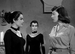 {Photo 4 de Cat-Women of the Moon}