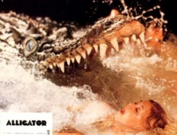 {Photo 4 de Le Grand Alligator}