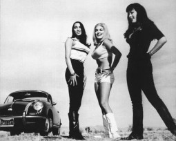 {Photo 3 de Les indispensables de Russ Meyer}