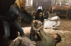 {Photo 2 de Masters of Horror Saison 2: The Screwly Solution}