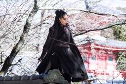 {Photo 1 de The Assassin}