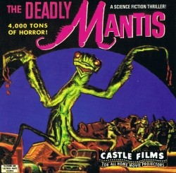 {Photo 2 de The Deadly Mantis}
